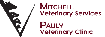 Mitchell Veterinary Services